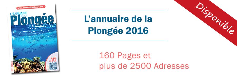 ap-New-2016-900